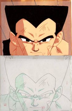 Dragon Ball, Z and GT  Anime series and movies  Dragon Ball Animation Cels  Shuusei Genga  Douga  and Roughs  Web collection  Scans selected and collected over the years in auctions sites and over the web.  edited with Adobe Photoshop.  provided by: www.kamisama.com.br