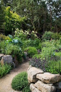 52 Fresh Cottage Garden Ideas for Front Yard and Backyard Inspiration 51 Fresh C. - 52 Fresh Cottage Garden Ideas for Front Yard and Backyard Inspiration 51 Fresh Cottage Garden Ideas - Amazing Gardens, Beautiful Gardens, The Secret Garden, Garden Cottage, Backyard Cottage, Garden Landscape Design, Garden Care, Edible Garden, Front Yard Landscaping