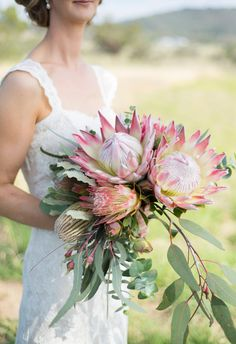 Gorgeous Bridal Bouquet at Peninsula Wild Flower featuring Native Flowers, King Protea, Menzii Banksia, Gum Australian Natives Flor Protea, Protea Bouquet, Protea Flower, Flowers For Bouquets, Protea Wedding, Floral Wedding, Wedding Bouquets, Wedding Flowers, Gardens