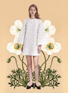 miss-moss-botanical-resort-jill-stuart
