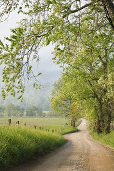 Roads, Trails and Paths *🇺🇸 Country road (near Memphis, Tennessee) (from Getty) cr. Beautiful Roads, Beautiful Landscapes, Beautiful Places, Beautiful Pictures, Country Life, Country Roads, Country Walk, Landscape Photography, Nature Photography