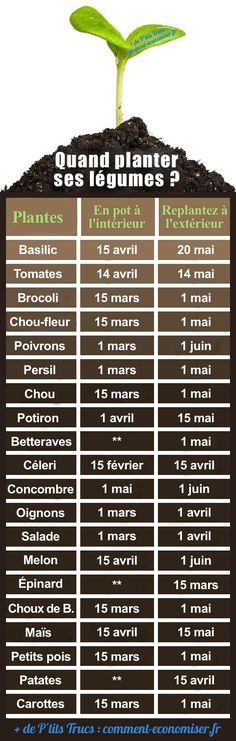 Le Calendrier Pour Ne Plus Se Tromper. When Planting + + + His Vegetables + In + The + Garden +? + The + Calendar + To + Do + More + + If Deceive. Potager Garden, Garden Planters, Vegetable Garden, Herbs Garden, Garden Bed, Permaculture, Organic Gardening, Gardening Tips, Urban Gardening