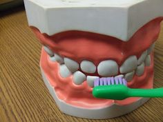 Brushing Teeth Activity from Cachey Mamas Classroom #dentist