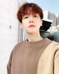 Read Baekhyun from the story EXO the type of boyfriend by with 31 reads. Baekhyun é il tipo di ragazzo che quando tu vai. Baekhyun Selca, Kyungsoo, Jimin, Exo Chanbaek, Kpop Exo, Exo K, Exo Chen, Park Chanyeol, Namjoon