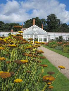Conservatory, Clumber Park, Nottinghamshire, Carburton, England