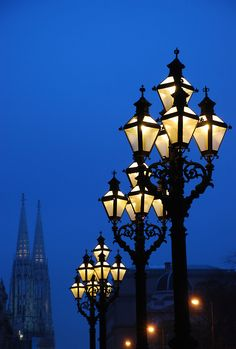 Street Lamps, Vienna, Austria photo via sophie