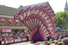 Image result for bloemencorso parade