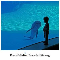 """Peaceful Mind Peaceful Life ~ """"We do not remember days, we remember moments."""" ~Cesare Pavese"""