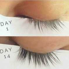day 1 and day Check out that growth! Order your younique Esteem Lash Serum here! Best Natural Foundation, No Foundation Makeup, Best Lashes, Fake Lashes, Vaseline Eyelashes, Mink Eyelashes, Nu Skin, Lash Growth, Beauty Tips