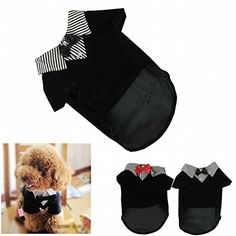 IUNEED Cute Small Pet Dog Clothes Western Style Gentelpet... https://www.amazon.com/dp/B00QF1CTFW/ref=cm_sw_r_pi_dp_iXAFxb4VJKXP3  800  each