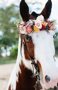 Boho Bride Wedding Inspiration from B&E Lucky in Love Wedding Blog | Photo by Absolutely Loved Photography #horse #floralcrown #bohowedding #weddingtransportation