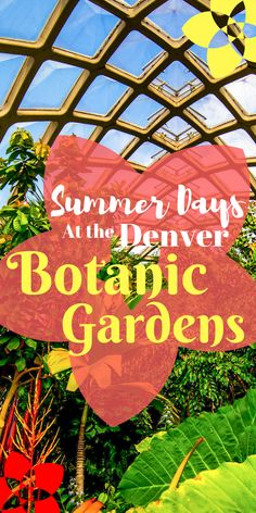 From outdoor concerts, to sunny days spent walking around the grounds; the Denver Botanic Gardens is a must-see destination this summer in Denver! Denver Colorado, Colorado Trip, Summer Days, Summer Fun, Denver Botanic Gardens, Fantasy Places, Summer Bucket Lists, Travel List, Summer Garden