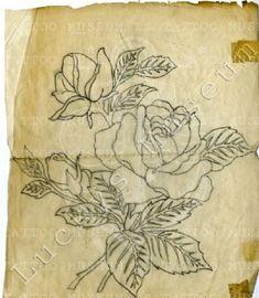 Vintage Tattoo Design, Tattoo Museum, Vintage Flash, Traditional Tattoo Flash, Tattoo Designs, Roses, Tattoos, Tatuajes, Pink