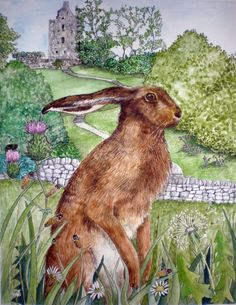 summery things . . .hares