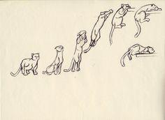 Cat mouvement by FannyCl.deviantart.com on @deviantART