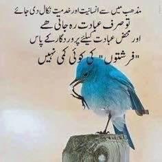 Urdu Quotes Islamic, Sufi Quotes, Quran Quotes Inspirational, Allah Quotes, Religious Quotes, Poetry Quotes, Islamic Messages, True Quotes, Islamic Phrases