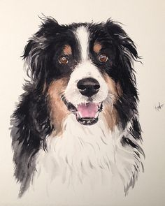 Custom pet portrait, original watercolor painting, dog or cat painting, affordable, unique gift/present.