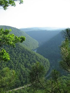 Pine Creek Gorge (commonly referred to as the Grand Canyon of Pennsylvania),  Tioga County, Pennsylvania