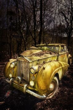 A 'vintage car graveyard' nestles in a Belgian forest, where old motors sit rusting among the trees. Abandoned Cars, Abandoned Buildings, Abandoned Places, Abandoned Vehicles, Vintage Cars, Antique Cars, Rust In Peace, Rusty Cars, Barn Finds