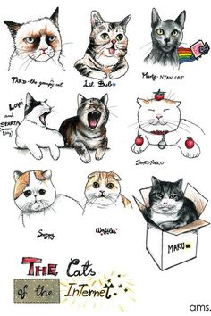 Deviantart user Frikibunny8 made this tribute to some of the internet's most famous cats!