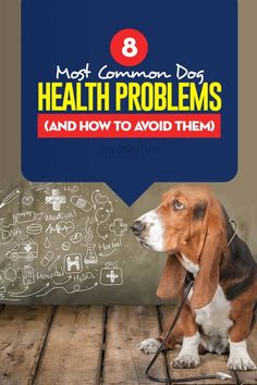 Dog Health Issues with Pictures Dog Health Tips, Pet Health, Dog Illnesses, Dog Nutrition, Dog Information, Sick Dog, Veterinary Medicine, Dogs Of The World