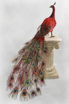 "Large 60"" Red Peacock Bird 129$ Artificial Large Birds."