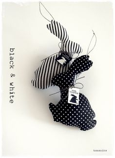 Sweet black and white bunny rabbits