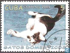 Postage Stamps - Cuba [CUB] - House Cat