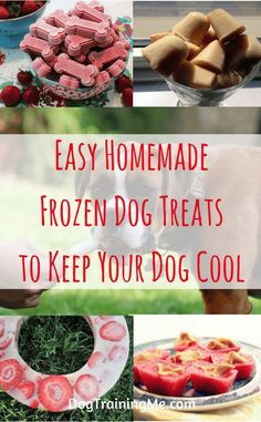 Homemade frozen dog treats can help to cool your dog down in summer. They are a great way to keep your dog cool in the heat and provide healthy nourishment and hydration at the same time. Read our article for a list of frozen dog treat recipes. Dog Treat Recipes, Healthy Dog Treats, Dog Food Recipes, Food Tips, Homemade Dog Cookies, Homemade Dog Food, Frozen Dog Treats, Puppy Treats, Dog Training