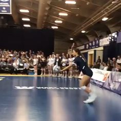 Volleyball Gifs, Volleyball Tryouts, Volleyball Cheers, Volleyball Motivation, Volleyball Skills, Volleyball Photos, Volleyball Practice, Volleyball Training, Coaching Volleyball