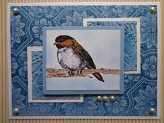 SC435 - Impression Obsession Chickadee by Stamp Muse - Cards and Paper Crafts at Splitcoaststampers
