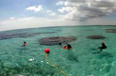 Belize Cruise Ship Shore Snorkel Excursions, Belize Snorkeling, Belize Shore Excursions Belize Snorkeling, Belize Barrier Reef, Independence Of The Seas, Ambergris Caye, Family Cruise, Shore Excursions, Boat, Vacation, Ship