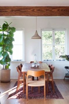 momo suzuki of black crane- love the simplicity of this- timber, plants, long dining, vintage chairs, beam, light, rug… beautiful clean, simple, no clutter!