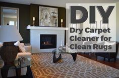 DIY Dry Carpet Clean