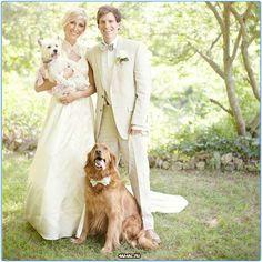 Собаки и свадьба  #свадьба #собаки #собака #россия #москва #серпухов #тула #спб #хабаровск #самара #омск #красиво #животные #добро #animals #pet #pets #dogs #dog #dogy #wedding #moskow #russia #animal
