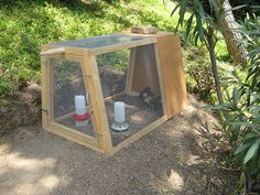 Chicken coop for the babies