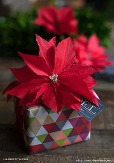 Make this easy gift topper or Christmas decoration from a simple paper cocktail napkin poinsetta. These are perfect for easy holiday decorations. Thanksgiving Crafts For Kids, Holiday Crafts, Christmas Crafts, Thanksgiving Recipes, Thanksgiving Turkey, Christmas Tree, Christmas Lights, Soulful Christmas, German Christmas