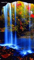 Very beautiful gif Beautiful Nature Pictures, Beautiful Nature Wallpaper, Beautiful Gif, Amazing Nature, Pretty Pictures, Beautiful World, Beautiful Landscapes, Beautiful Places, Gif Pictures