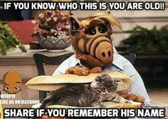 My mom loved Alf. She hated cats! LOL Ever notice the plots were cribbed from Mr. Ed? That show is old, it was in black & white!