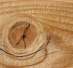 Picture of Cracked Wood Knot as a Rule of Third Background stock photo, images and stock photography. Photography Articles, Image Photography, Photography Ideas, Rule Of Three, Banner Printing, Art Tips, Third, Stock Photos, Photo Ideas