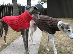 Free pattern-Ravelry: Side Button Greyhound Sweater pattern by Terri Lee Royea Knitted Dog Sweater Pattern, Knit Dog Sweater, Dog Pattern, Large Dog Sweaters, Pet Sweaters, Greyhound Coat Pattern, Italian Greyhound Clothes, Pet Coats, Dog Jumpers