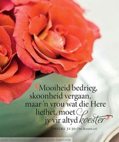 Printable Quotes, Afrikaans, Qoutes, Art Projects, Prayers, Inspirational Quotes, Words, Rose, Flowers