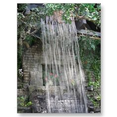 The waterfall at the RainForest, Cleveland Zoo. Cleveland Zoo, Zoos, Family Day, Family Memories, Heaven On Earth, Us Travel, Thank You Cards, Wander, Places Ive Been