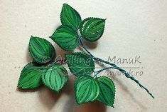 233......................................................... Rose Leaf Quilling ... stupendous !
