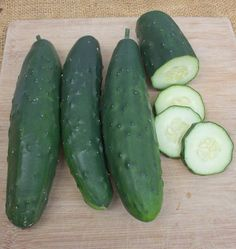 Choose Olympian cucumber seeds for container growing or just in your organic vegetable garden for the best gynoecious Marketmore cucumber seeds available.