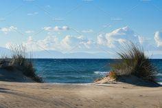 Winter Sea & Sand Dunes by QueenDesigns on @creativemarket