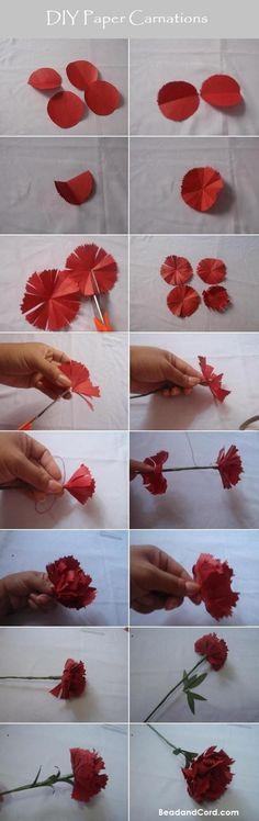DIY Flower : DIY Paper Carnations