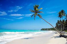 Riviera Maya-absolutely the most incredible beach I have ever been to in my life.  It looks just like the picture!
