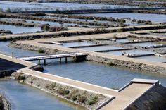 """Arquitectura y Paisaje: campos de sal """"La Tancada"""" convertidos en un paisaje líquido por EMF"""