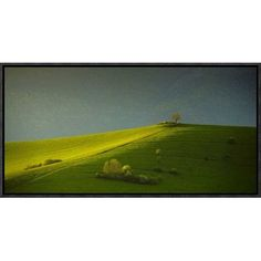 "Global Gallery 'Painted with Light' by Matej Rumansky Framed Photographic Print Size: 11"" H x 22"" W x 1.5"" D"